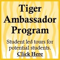 TN Ambassador Program